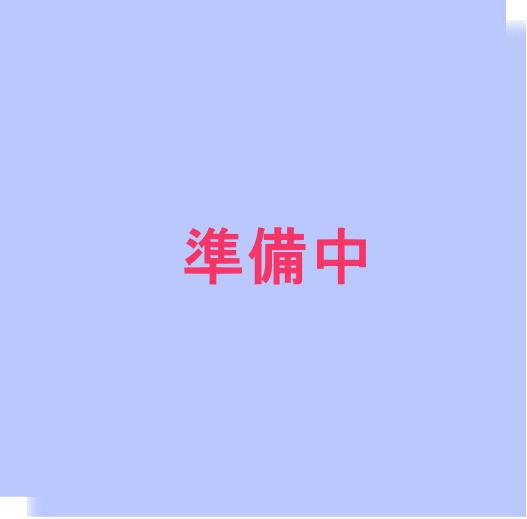 画像1: 720〜900mlx2本入り配送箱 (1)
